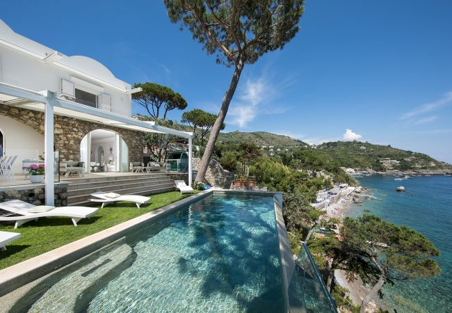 Villa/Dettached house in Nerano - Villa Ibiscus with Infinity Pool, Direct Sea Access, Sea View, Parking and Breakfast