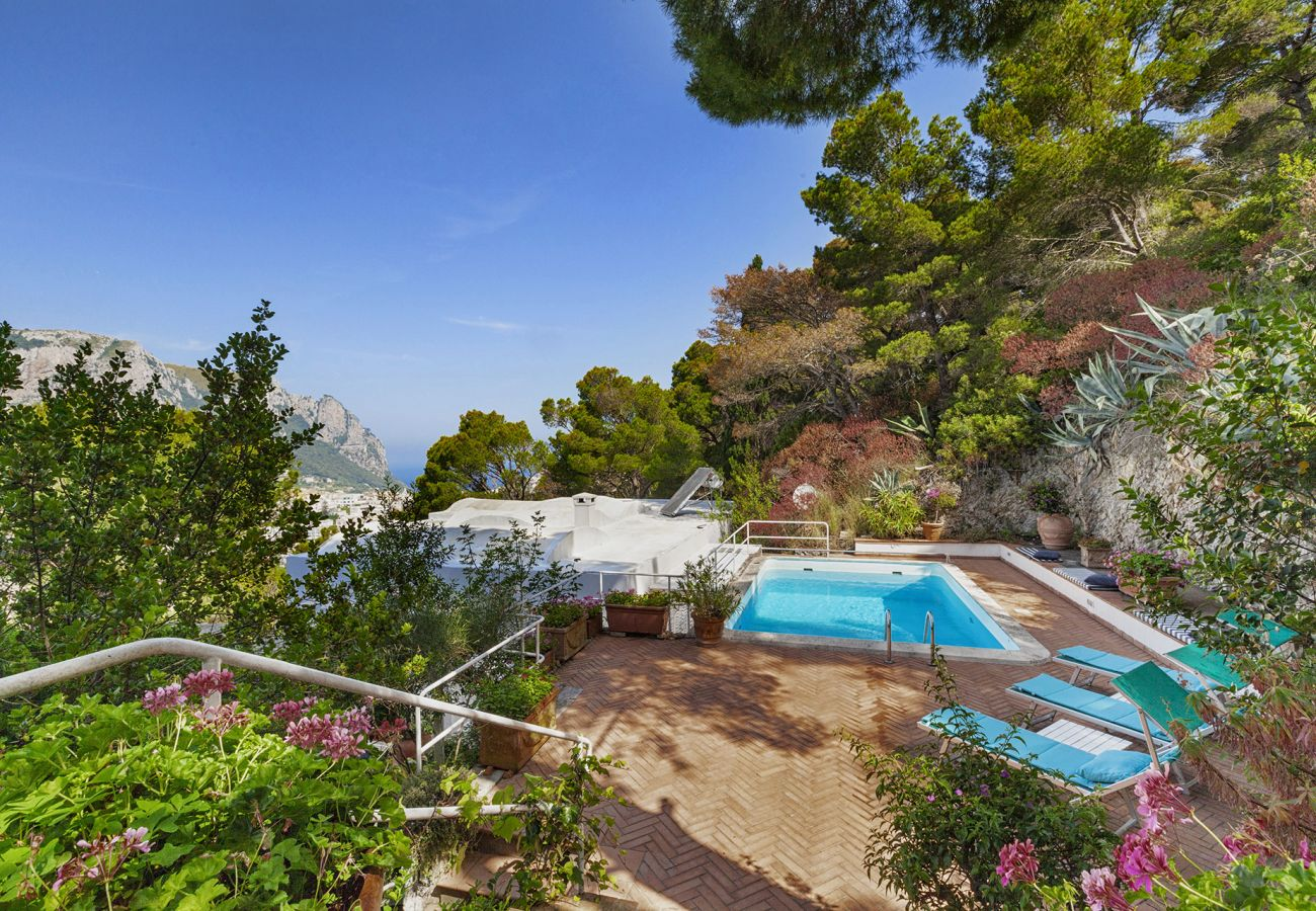 Villa in Capri - AMORE RENTALS - Villa Apollo with Swimming Pool, Sea View, Terrace and Garden