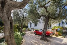 House in Sorrento - Casa Punta del Capo with Private Terrace and Parking